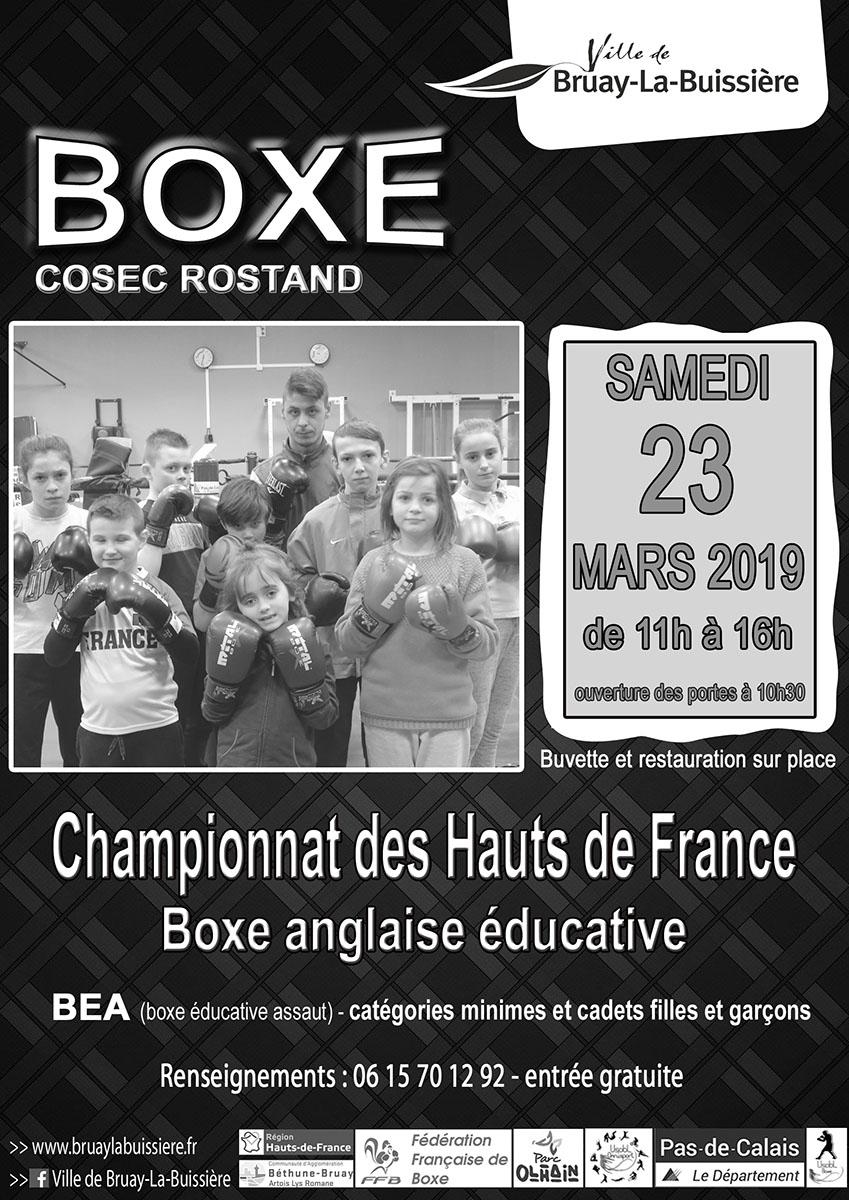 Affiche boxe éducative 2019
