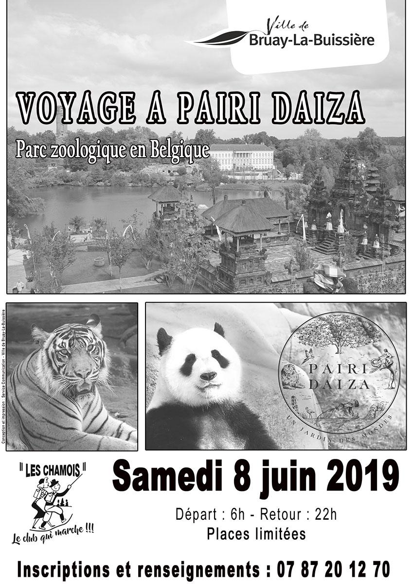 Belgique-les chamois-pairi daiza